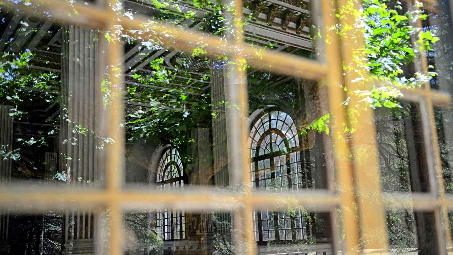 Vue sur le plafond doré et les fenêtres en forme d'arche de l'Auberge des Dauphins.