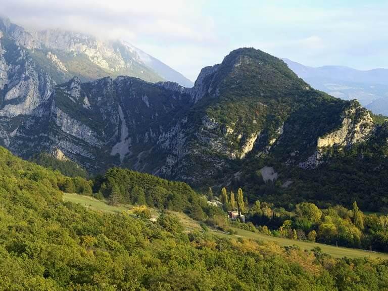 Vue sur la végétation verdoyante et les couches géologiques de la forêt de Saoû.