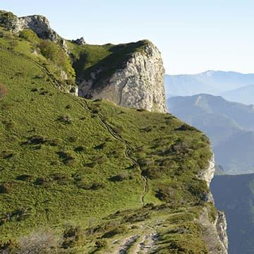 Vue sur la montagne des Trois Becs de la forêt de Saoû.