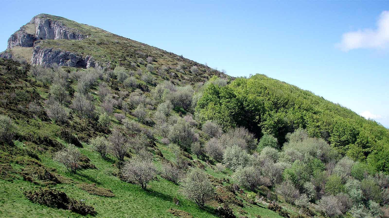 Versant nord verdoyant du Veyou, point culminant de la montagne des Trois Becs.